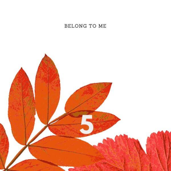 Belong to Me by Rachel Harrison
