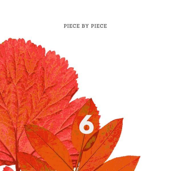 Piece by Piece by Sean Woznicki